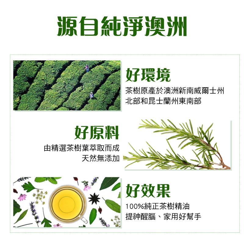茶樹精油-03